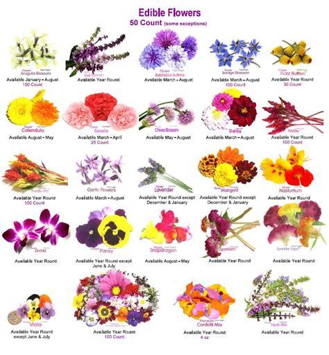 Edible Flower Garden Gardening Pinterest Edible Flower Garden