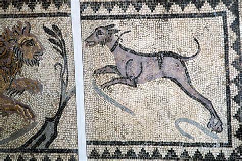 mosaic pattern in evolution farge arellano vianney