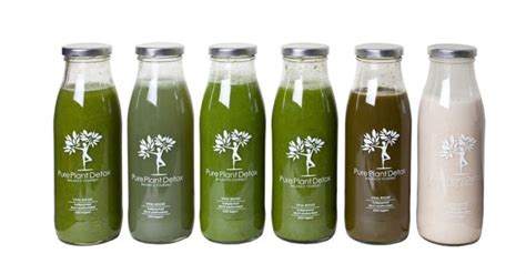 Detox Juice For Test by 1000 Images About Detox Kur Tests On Juice