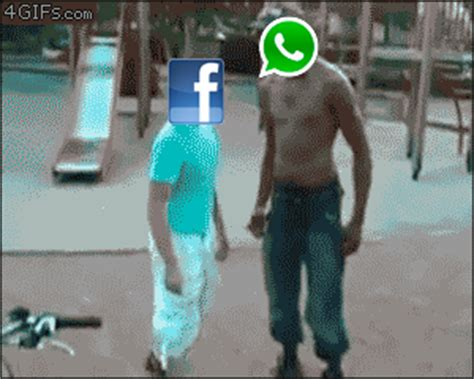 funny hot gifs for whatsapp funny animations gif images for whatsapp facebook