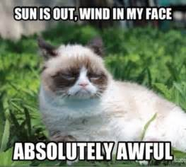 No Grumpy Cat Meme - grumpy cat no meme facebook image memes at relatably com