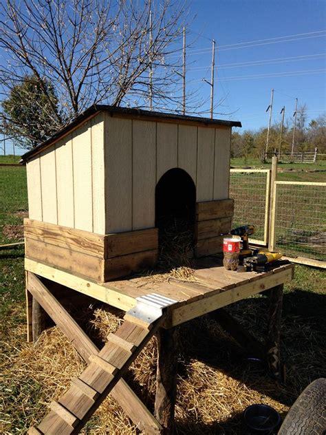 pallet wooden  goat house shelter pallet ideas