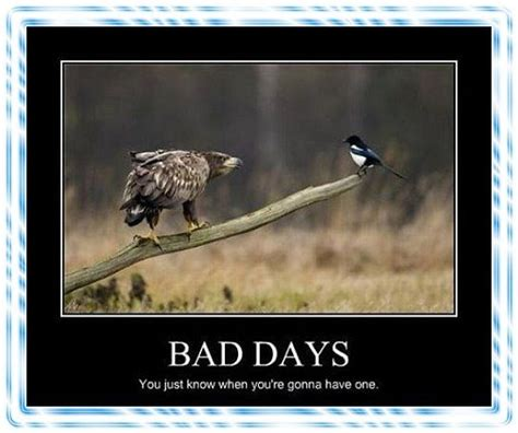 Bad Day Meme - having a bad day having a bad day a funny picture