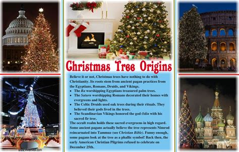 pagan origin of christmas tree should christians trees 171 vivien veil