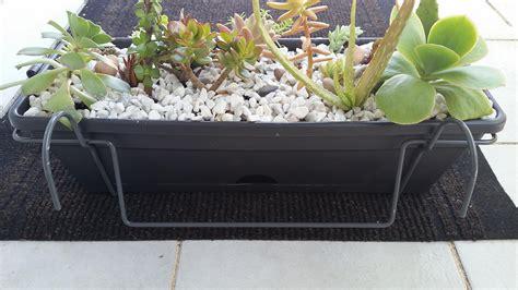 succulent and cactus arrangement balcony planter box
