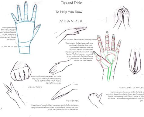 how to draw hands 35 tutorials how tos step by steps hand tutorial by shopdeartiste on deviantart