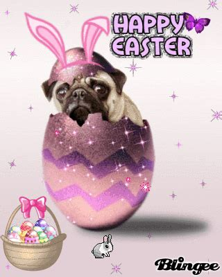 happy easter pug easter pug picture 50465631 blingee
