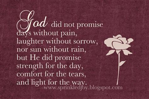 god comforts the grieving god s promises god s promises pinterest
