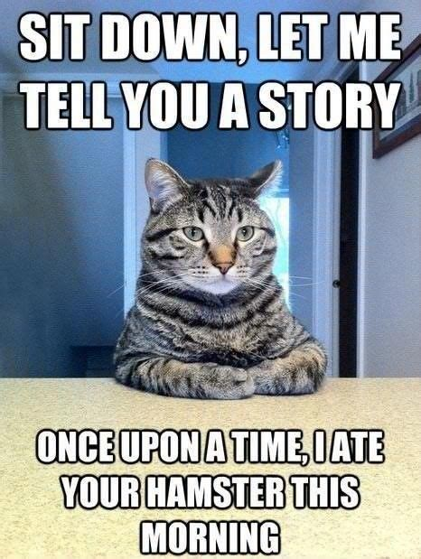 Cat Sitting At Table Meme - let me tell you a story cat humor