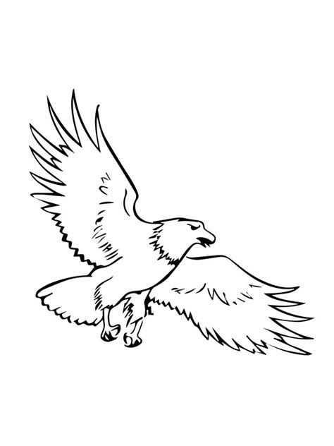 eagle template free printable bald eagle coloring pages for