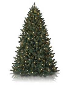 christmas trees on sale com