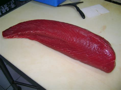 Tuna Loin Sashimi Grade fresh sashimi grade tuna products indonesia fresh sashimi