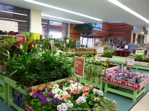 dobbies garden centre shepton mallet
