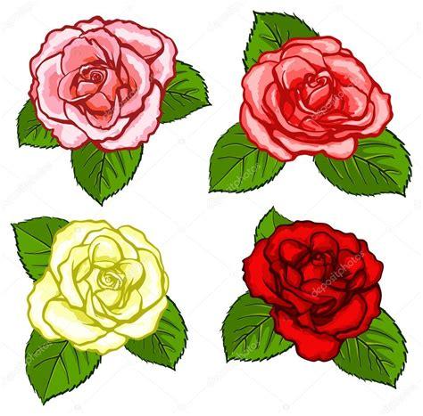 imagenes de rosas diferentes colores cuatro rosas diferentes vector de stock 27788735