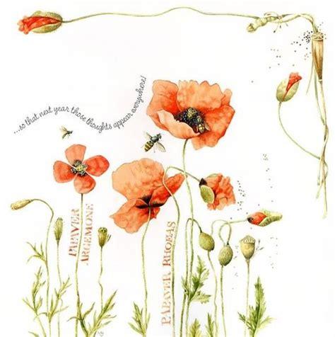 sketchbook nature 1000 images about marjolein bastin on