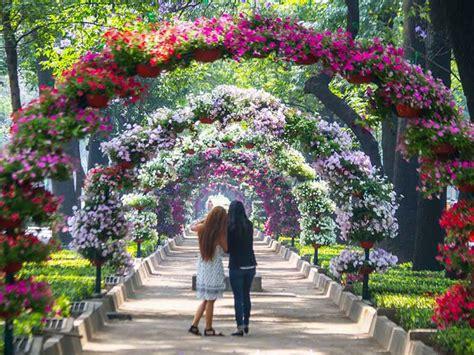 imagenes de jardines soñados festival de flores en polanco y chapultepec revista