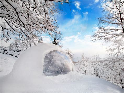 garden igloo garden igloos transform your backyard business insider