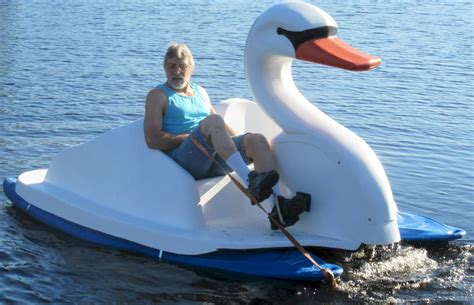 swan boats gif swan paddle boat bing images