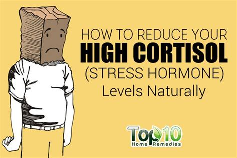 how to downsize your home how to reduce your high cortisol stress hormone level
