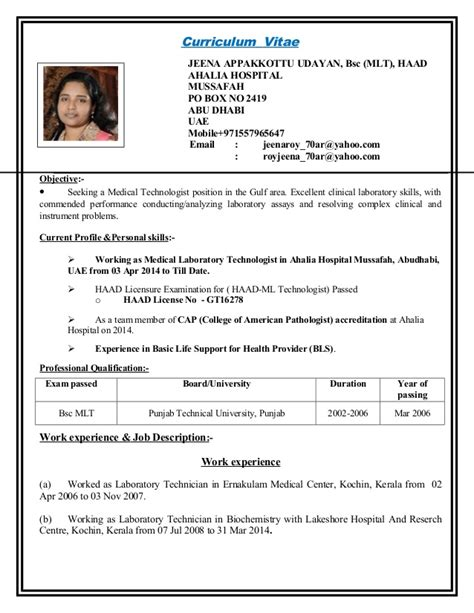 Sle Text Resume Cv 11 Curriculum Vitae For Mail 28 Images Giz Images