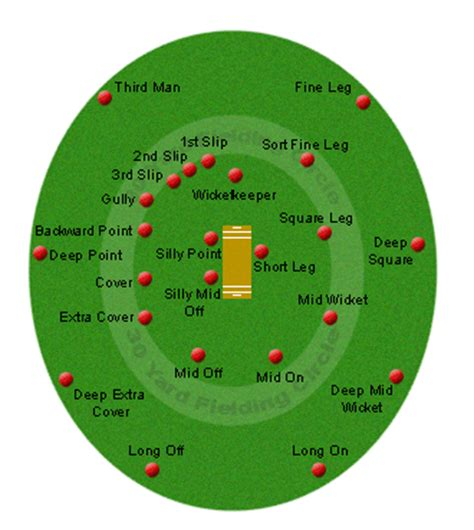 diagram of cricket fielding cricket fielding and players realbuzz