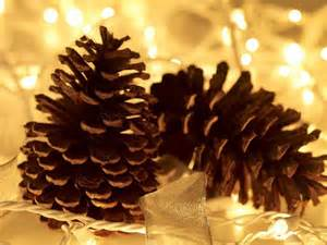 pine cones amongst fairy lights christmas wallpaper