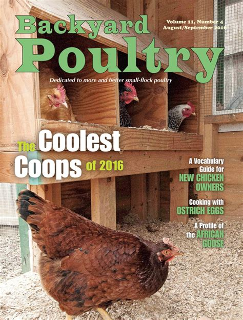 backyard chicken magazine byp august september 2016 flip book countryside network