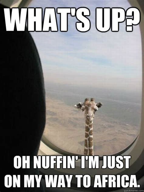 Meme Africa - what s up oh nuffin i m just on my way to africa