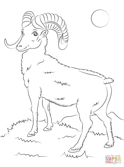 Mountain Sheep Coloring Page | rocky mountain bighorn sheep coloring page