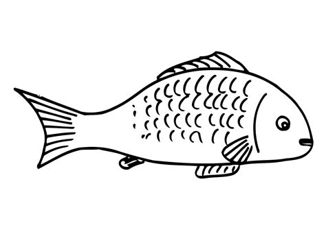 coloring pages on fish free printable fish coloring pages for kids