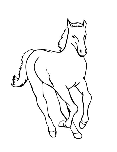 coloring pictures of baby horses baby horse coloring pages coloring home