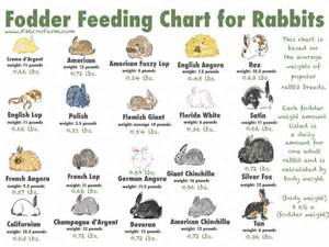 rabbit color calculator fodder chart for rabbits from fmicrofarm micro