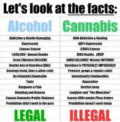 is non alcoholic better for you study finds cannabis is much safer than or tobacco