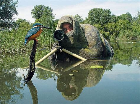 20 pictures showing that nature photographers have the best jobs ever