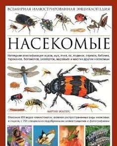the complete illustrated world encyclopedia of insects a history and identification guide to beetles flies bees wasps mayflies mantids earwigs ants and many more books 144 assorted realistic insects bugs a
