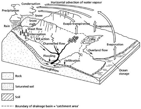 Hydrologic Cycle Worksheet by Water Cycle Definition From Answers