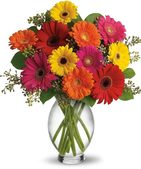 farm fresh service desk hours great gerberas farm fresh daisies san diego flower shop