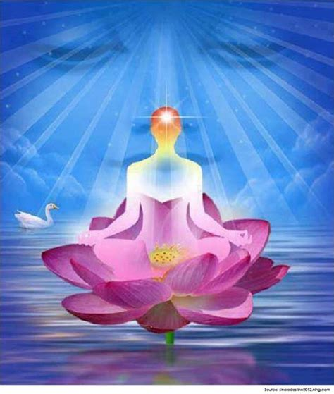 imagenes raja yoga raja yoga meditation and it s benefits yoga poses
