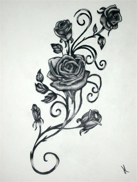 roses with vines drawing rose vine drawing black rose