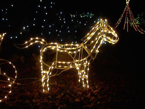 lighted horse and carriage outdoor large lighted christmas horse carriage yard sculpture ebay