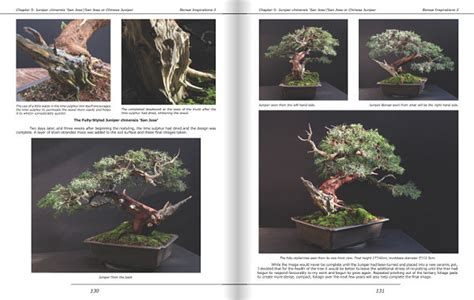 bonsai foundations books b4mepublishing bonsai books