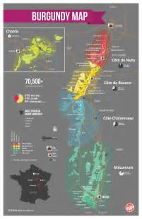 global writes coma simple guide to burgundy wines with