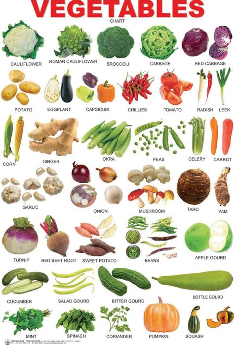 list of vegetables vegetables chart mypyramid vegetables