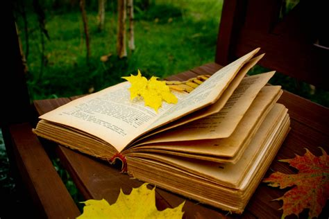 libro autumn seasons autumn inspired reading week activities ru student life
