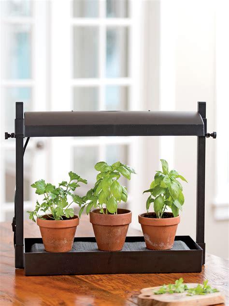 micro grow light garden indoor herb garden  shipping