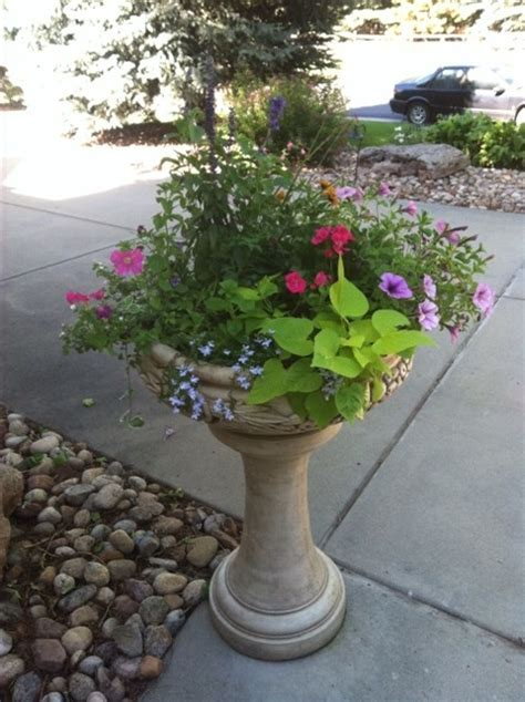 summer flower pots landscaping ideas pinterest be