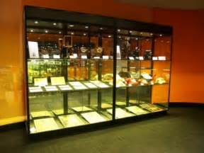 Display Cabinets Adelaide South Australia Museum Display Cabinets Australian Made Buy