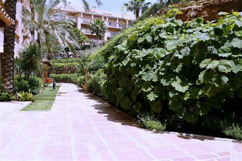 imagenes de jardines con gramineas paisajismo en marbella estudio de paisajismo m 225 laga