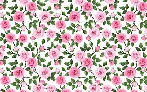imagenes rosas wallpapers suave patr 243 n rosas rosadas fondos de pantalla suave