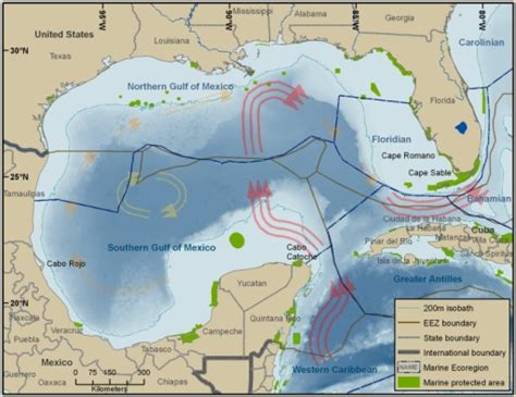 map us states gulf mexico gulf of mexico large marine ecosystem surrounded by un